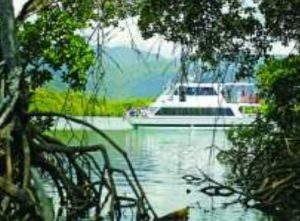Cairns Harbour Cruises - WA Accommodation