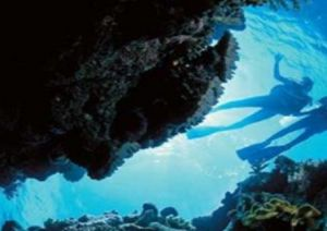 Deep Sea Divers Den - WA Accommodation