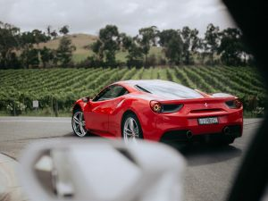 The Prancing Horse Supercar Drive Day Experience - Melbourne Yarra Valley - WA Accommodation